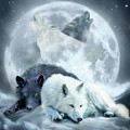 Yin Yang Wolf Mates 2 by Carol Cavalaris