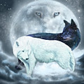 Yin Yang Wolves by Carol Cavalaris