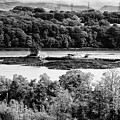 Ynys Gored Goch Island In The Menai Strait North Wales Uk by Joe Fox