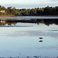 York River, Maine by Steve Gass