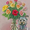Yorkey Rose by Susanna Katherine