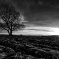 Yorkshire Serenity by Unsplash