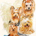 Yorkshire Terrier W/ghost by Barbara Keith