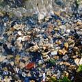 Yorktown Beach  by Lara Morrison