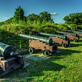 Yorktown Cannons by Pete Federico