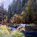 Yosemite 1 by Vijay Sharon Govender