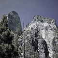 Yosemite by Cat Pancake