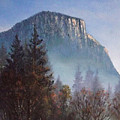 Yosemite Dawn Detail by Sean Conlon