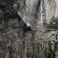 Yosemite Falls by Adam Rainoff