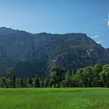 Yosemite National Park Panorama by Michael Ver Sprill