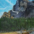 Yosemite Political Statement by Travis Day