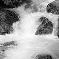 Yosemite Raging River Stream by Richard J Thompson