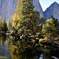 Yosemite Reflections 3 by Vijay Sharon Govender