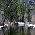 Yosemite Reflections by Christine Owens