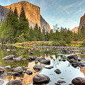 Yosemite Valley Reflected In Merced River by Ben Neumann
