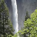 Yosemite Waterfall 2 by Laura Leigh McCall