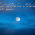 You Are My Moon by Janice Pariza