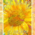 You Are My Sunshine 2 by Jill Love