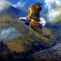 You Cannot Fly Like An Eagle With Wings Of A Wren by Yuki Othsuka