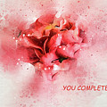 You Complete Me Romance / Valentine's Day Greeting Card by Kay Brewer