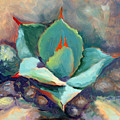 Young Agave by Athena Mantle