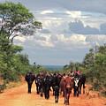 Young Herders, Zambia by Krin Van Tatenhove