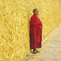 Young Monk Against Yellow Wall by Angela Siener