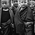 Young Monks II Bw by Steve Harrington