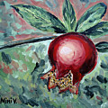 Young Pomegranate by Maria Langgle