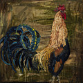 Young Rooster by Jodi Monahan