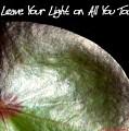 Your Light by Lisa Renee Ludlum