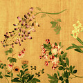 Yuan's Hundred Flowers by S Paul Sahm