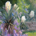 Yucca And Wisteria by Bunny Oliver