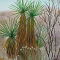 Yucca Stand by Myrna Salaun