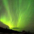 Yukon Northern Lights 1 by Phyllis Spoor