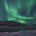 Yukon Northern Lights 8 by Phyllis Spoor