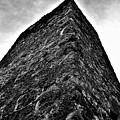 Yulee Sugar Mill Ruins  by Mario Carta