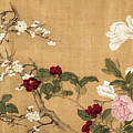 Yun Shouping's Flowers by S Paul Sahm
