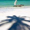 Zanzibar Beach by Adam Romanowicz