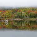 Zealand Pond - Bethlehem New Hampshire by Erin Paul Donovan
