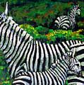 Zebra Family by Shirley Heyn