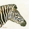 Zebra Head Study Painting by Juan  Bosco