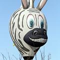 Zebra Hot Air Balloon At Balloon Fiesta by Karen Mastenbrook
