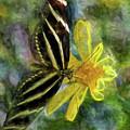 Zebra Longwing Butterfly by Teresa Wilson