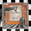 Zebra Or Giraffe Peek A Boo by Alissa Beth Photography
