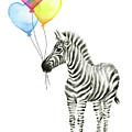 Baby Zebra Watercolor Animal With Balloons by Olga Shvartsur