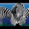 Zebras In Blue Oasis by Dana Bennett