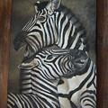 Zebras by Nellie Visser