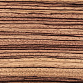 Zebrawood - Natural Abstract by Phil Cardamone