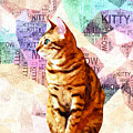 Zen Cat by Stacey Chiew
